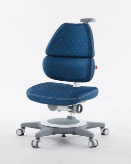 Kid Chair – EGO Ergo Chair
