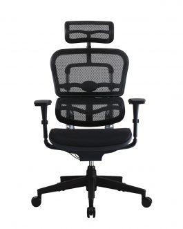 Ergohuman Series – Ergo Office Chair