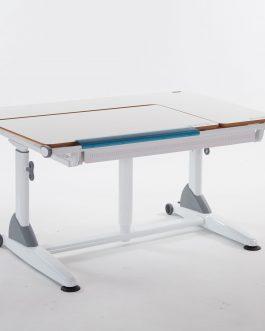 Computer Desk Ergonomic Design – SD2L