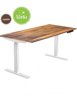 Height Adjustable Desk – ET3